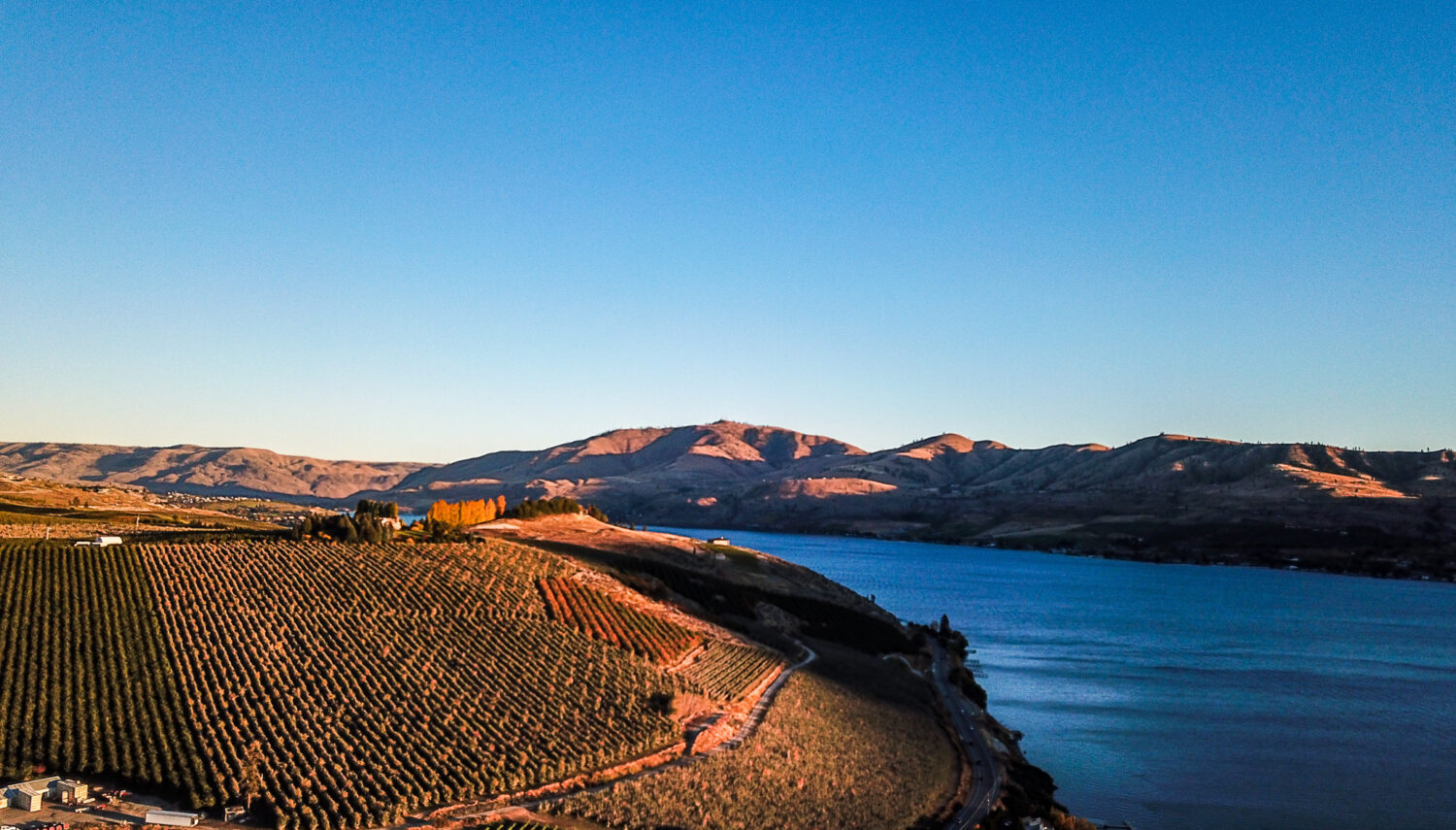 Broad blue river winds to the right of a hillside with rows of grape vines. Tab hills are in the distance and the sky is bright blue.