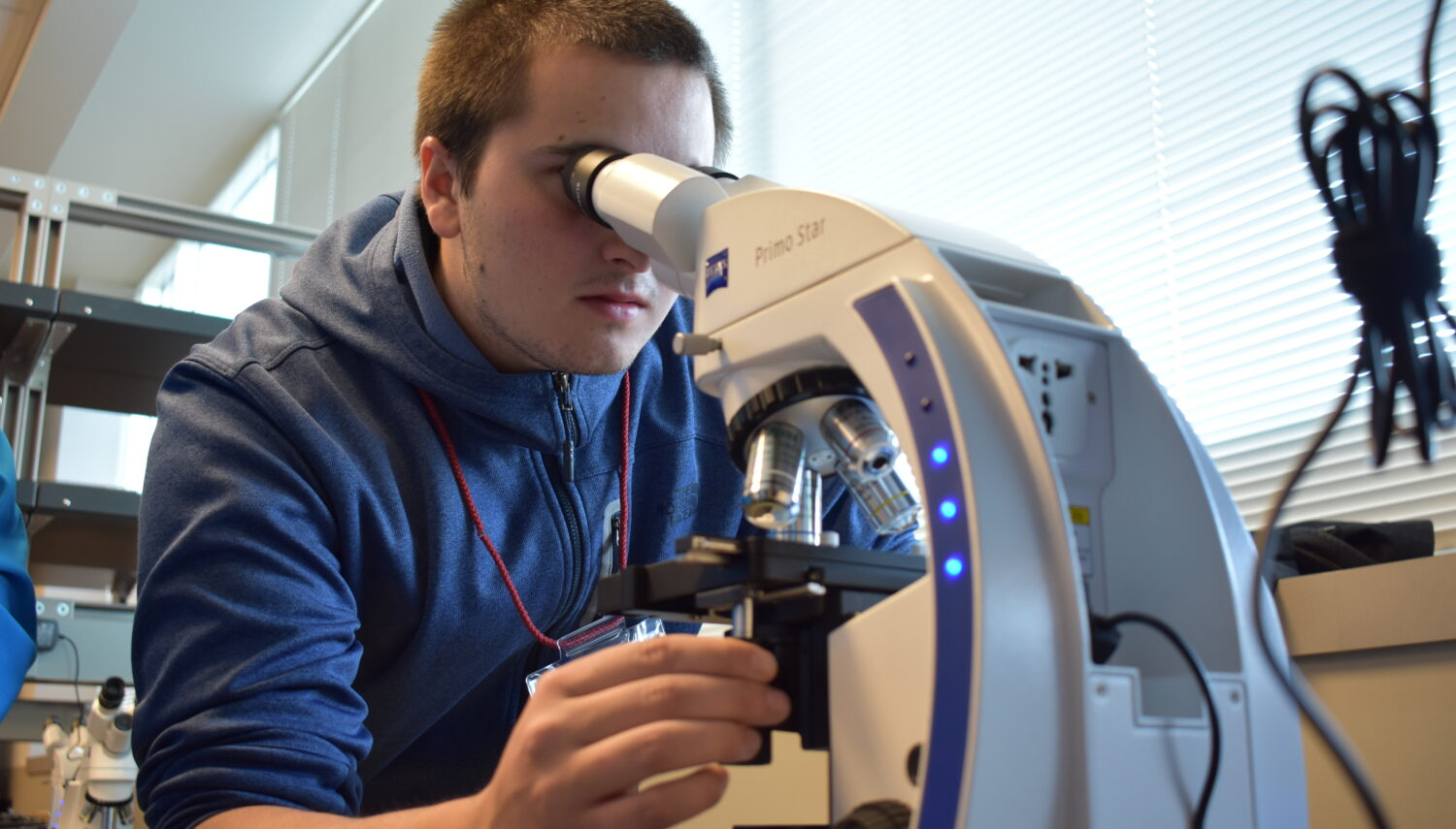 A young man with short-cropped hair wearing a blue sweatshirt looks into a microscope.