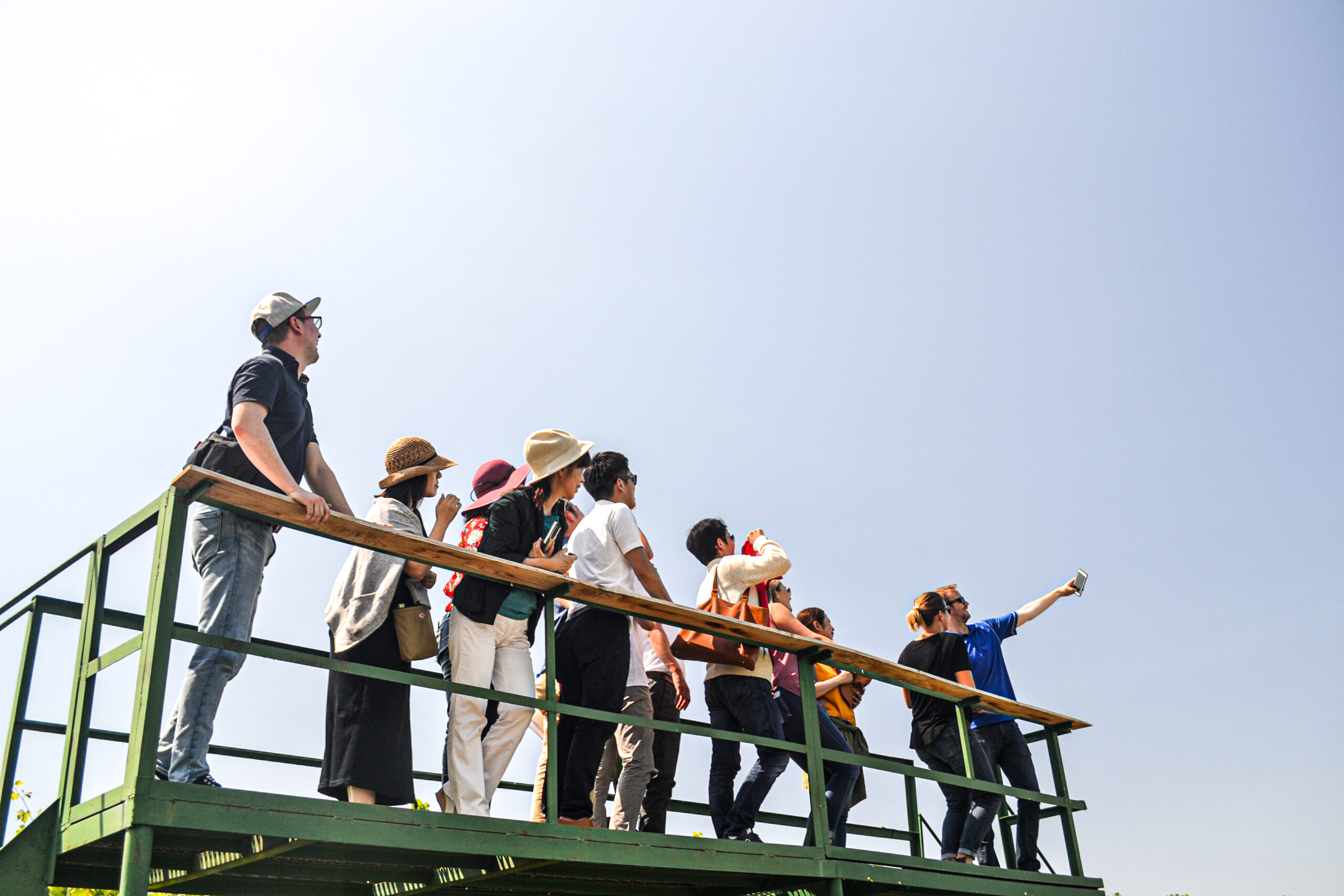 12 people in sun hats and with bags stand on a green platform looking at the man at the right end taking a photo with a mobile phone. The background is the pale blue sky.