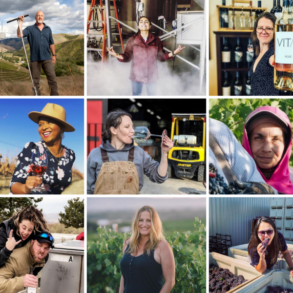 a collage of 9 images with people in each image doing various activities related to wine, including standing in a cellar, drinking wine, holding grapes, holding a wine bottle