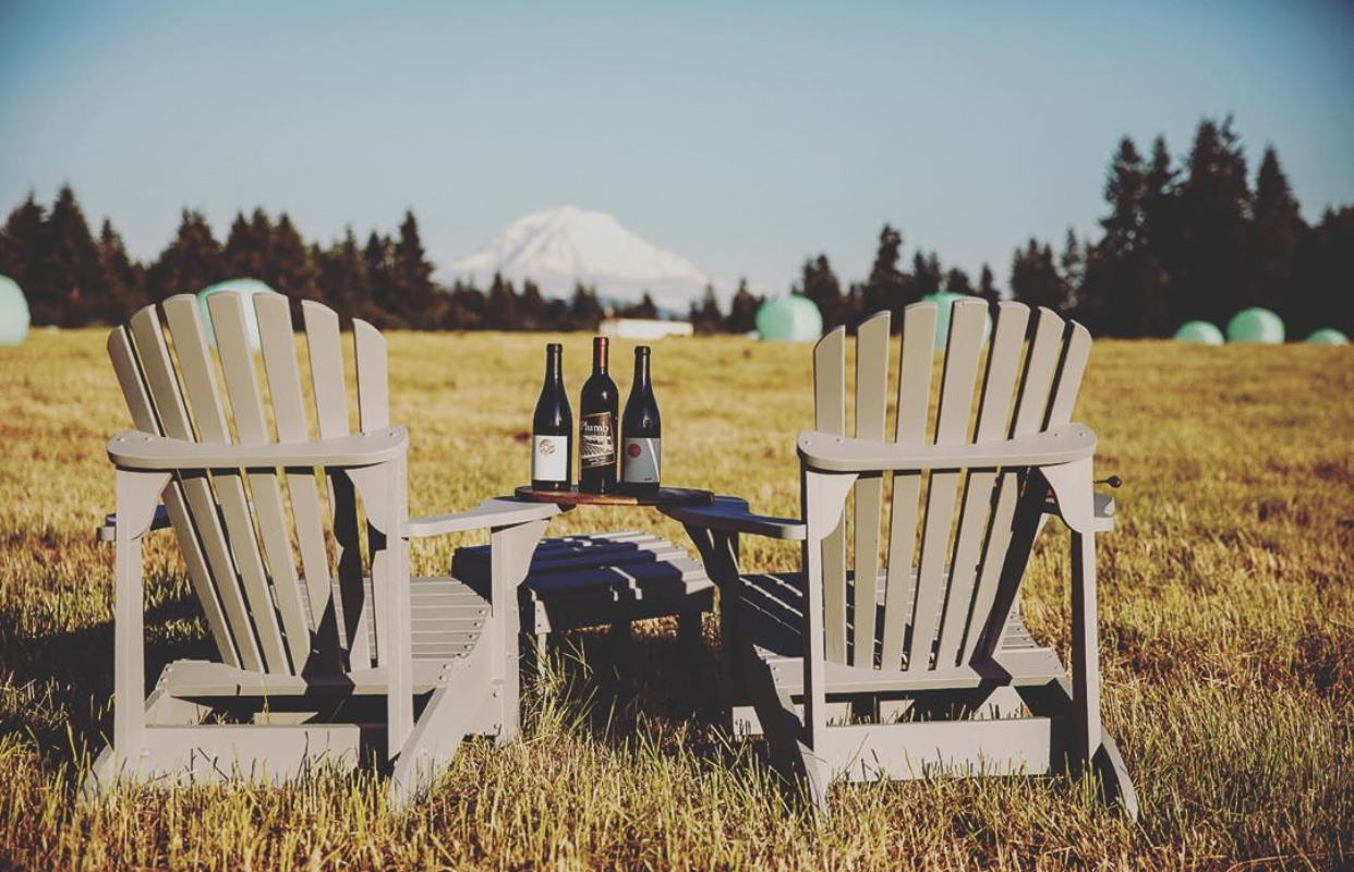 Two adarondack chairs with a table between them with three bottles of wine. The chairs are in a brown field with pine trees at the edge of the field and a snow-covered mountain in the background.