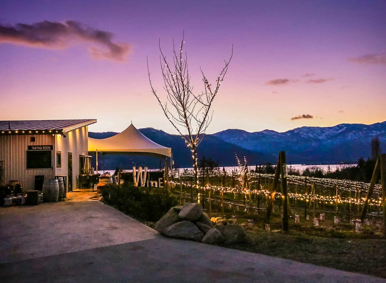 """Sunset colors the sky pink and peach over a small building with a """"Tasting Room"""" sign. There is a tent and grape vines with twinkle lights to the right of the building."""