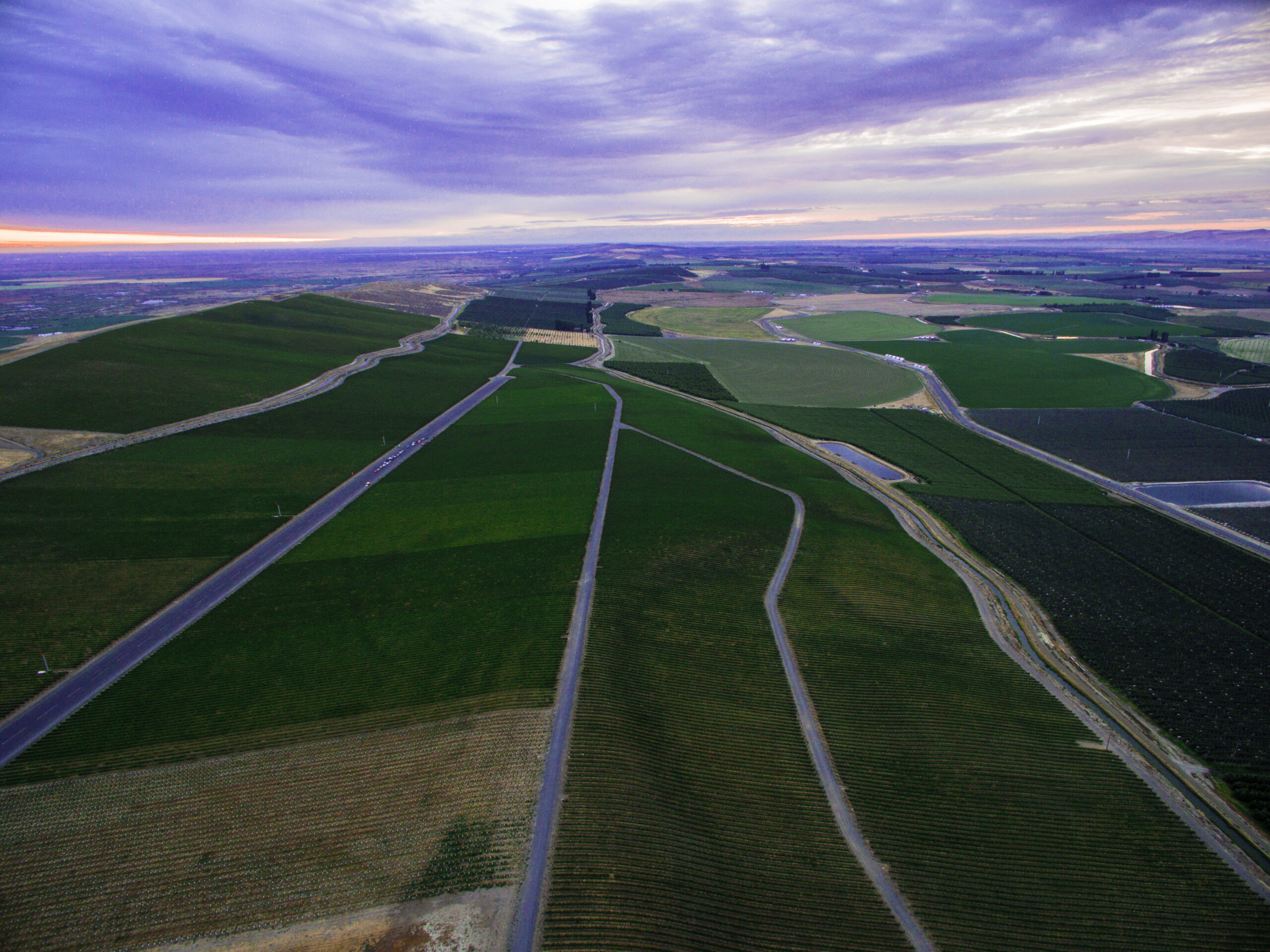 Aerial view of green vineyard blocks at twilight, divided by roads and stretching toward a blue horizon. The sky above is purple and blue.