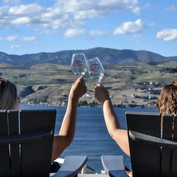 Two people cheers with wine glasses in front of a body of water and landscape. Only their arms, hands, and the backs of their heads are visible.