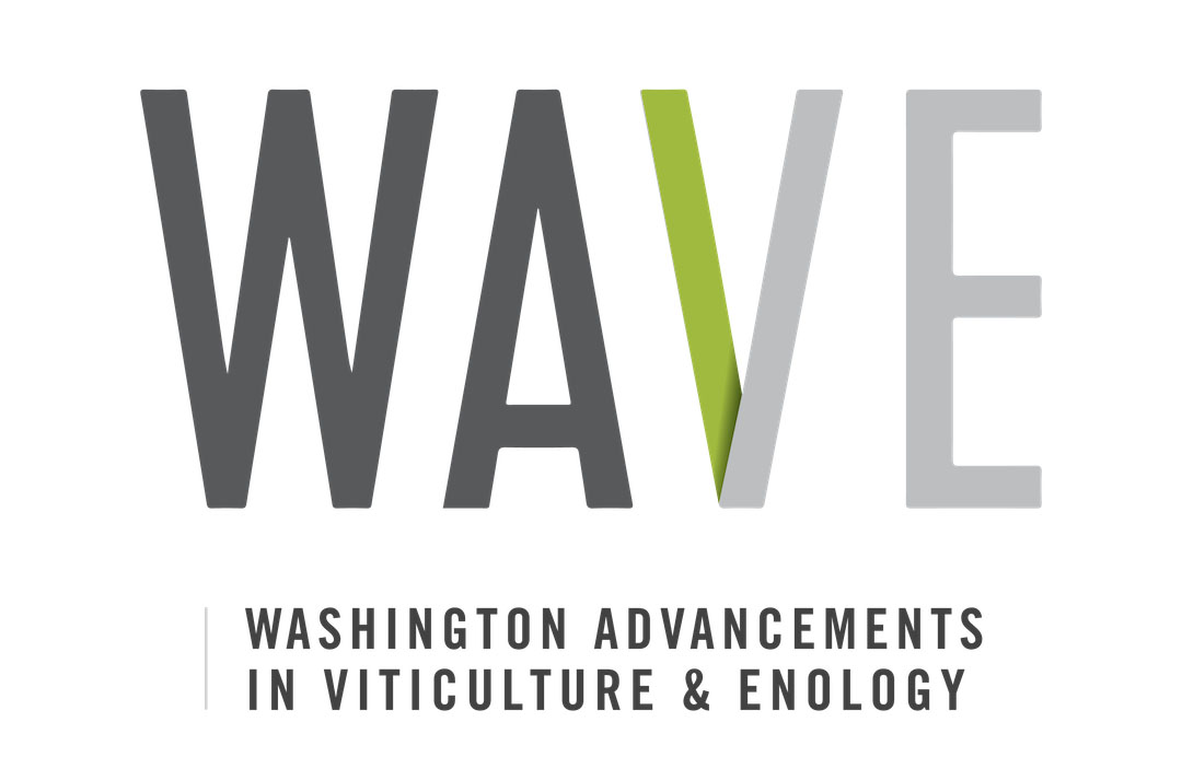 Logo for Washington Advancements in Viticulture and Enology (WAVE)