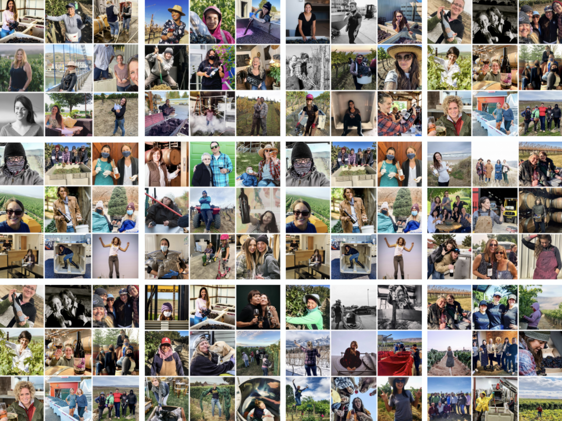 A collage of over 70 images of women doing wine-related actions.