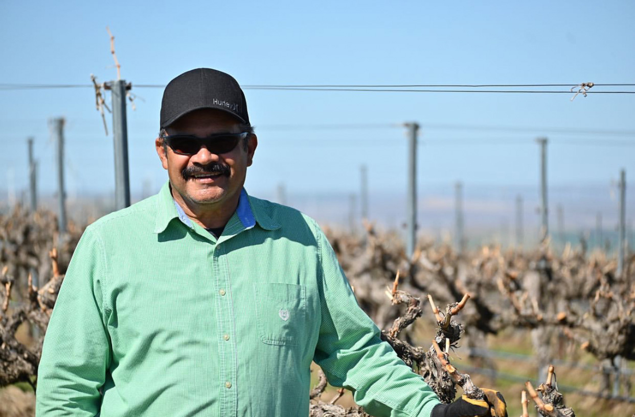 A mustached man with sunglasses, black hat, and green button-up shirt smiles stands in front of vines without leaves.