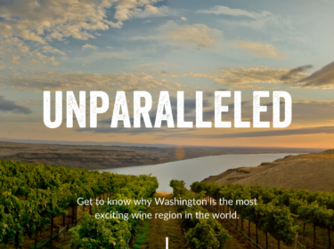 Rows of green grape vines growing down a hill with a large broad river in the distance, followed by tan rugged hills. The sky above is light blue with sunset-tinted ivory and orange clouds. Text overlay reads: